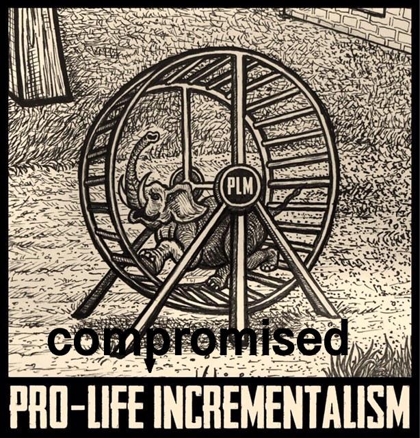 prolife-incrementalism.jpg