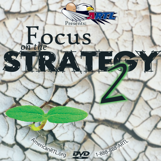 Focus_on_the_Strategy_2.png
