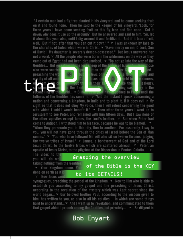 Read Bob Enyart's life's work -- The Plot: The overview of the Bible is the KEY to its details!