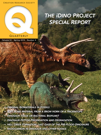 Cover of CRSQ Spring 2015 issue