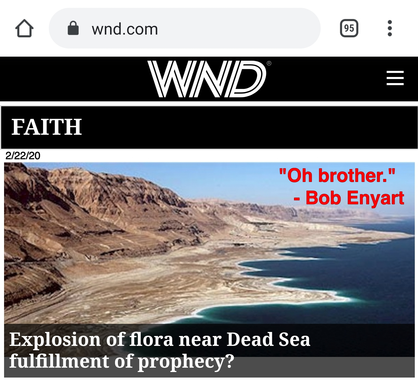 Another embarrasing End Times headline by WND: Dead Sea flora sign of the last days?