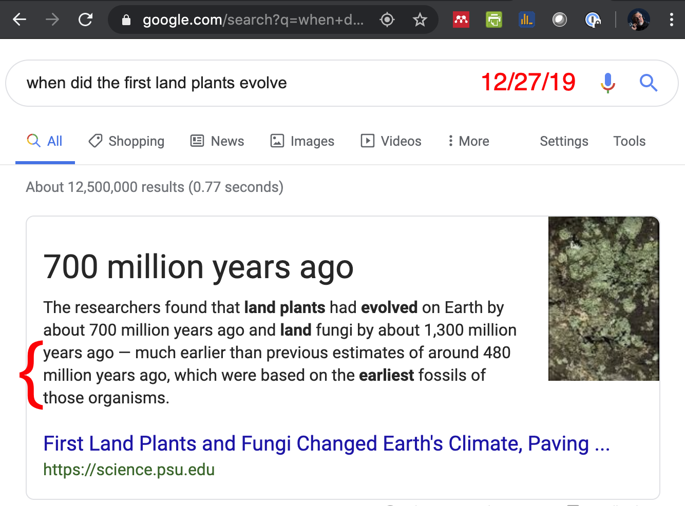 Land plants appear hundreds of millions of years before expected