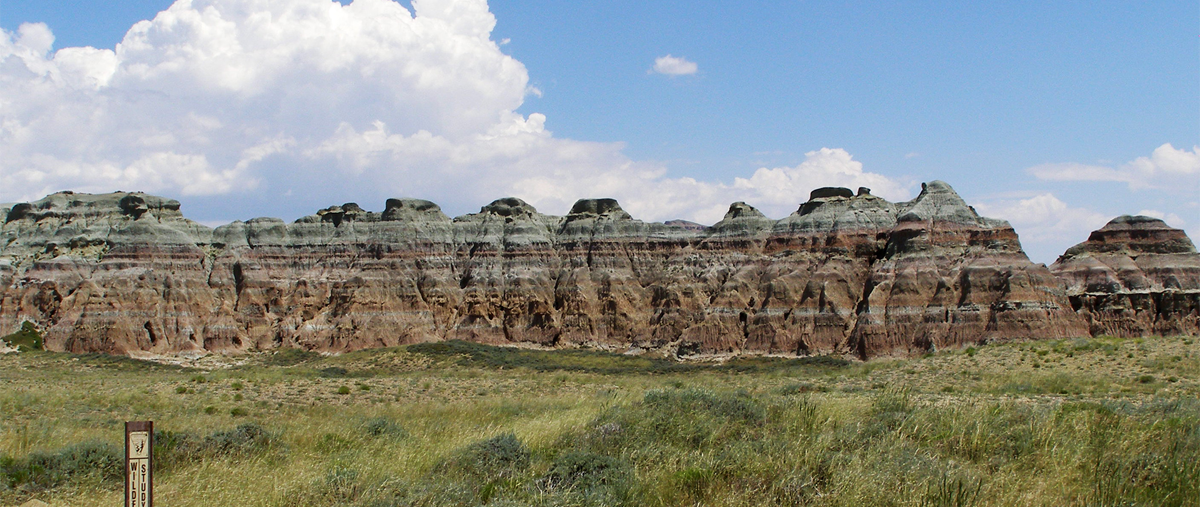 See the same flat gaps parallel strata all around the world, including here in the Honeycomb Buttes in Wyoming