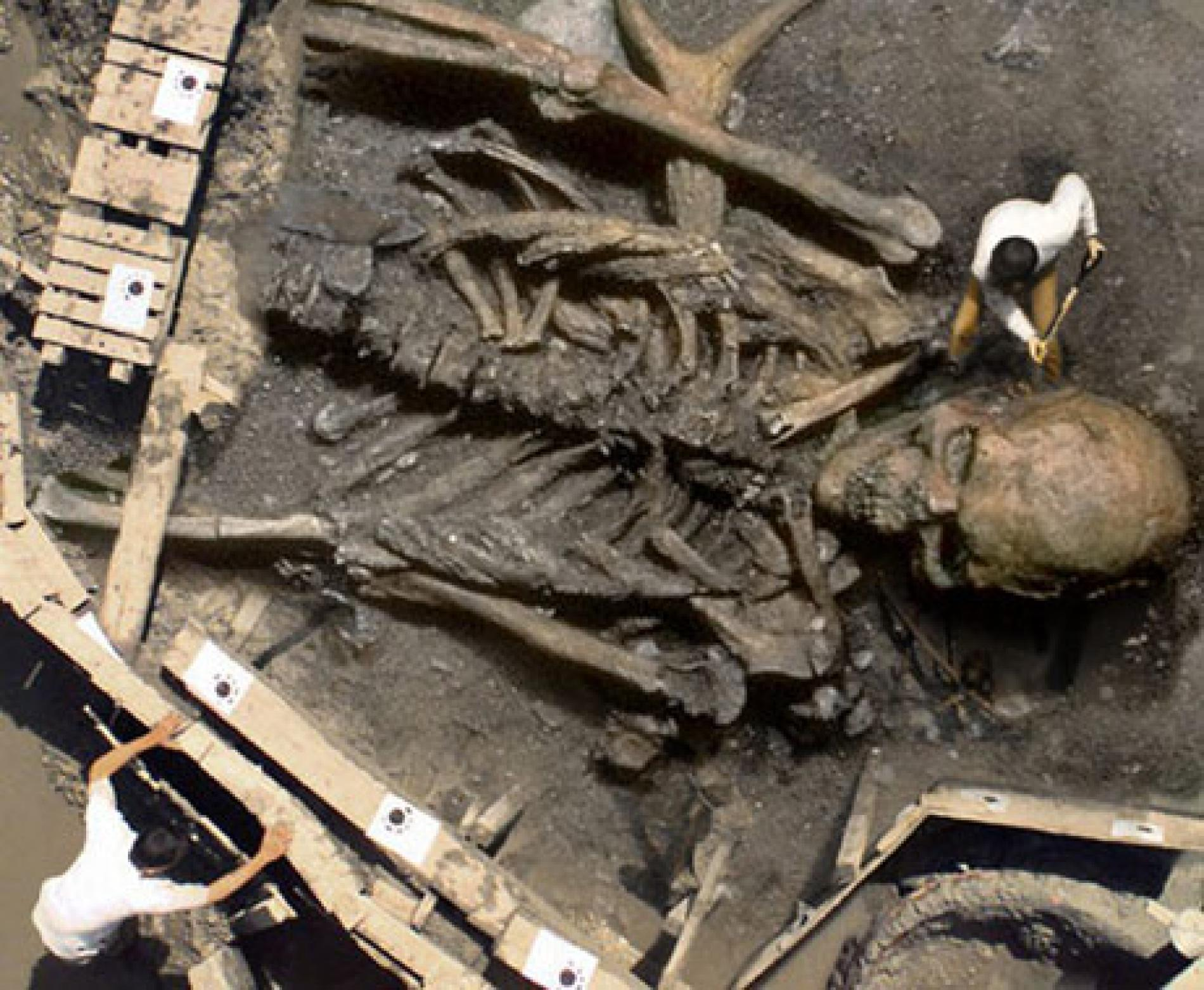 Photo of a fake giant skeleton being dug out of the ground