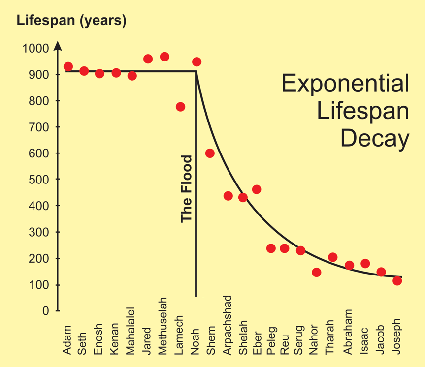 Graph of lifespans showing systematic decline after the flood