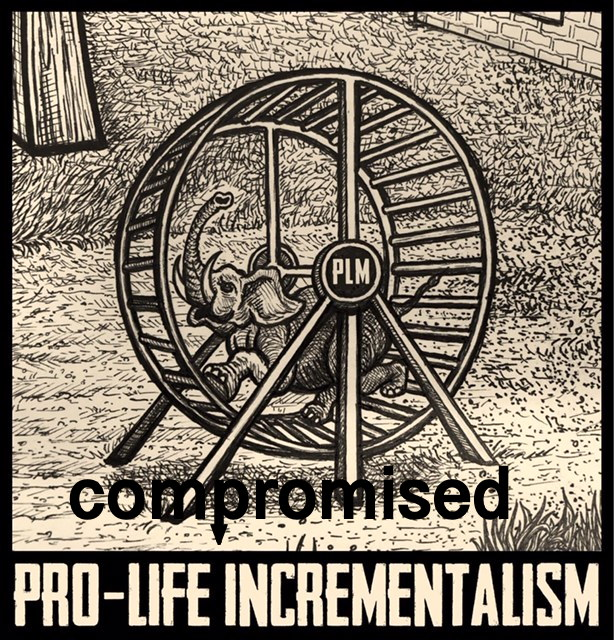 prolife-incrementalism.jpg